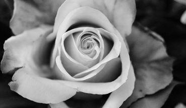 Gedenken für Corona-Opfer