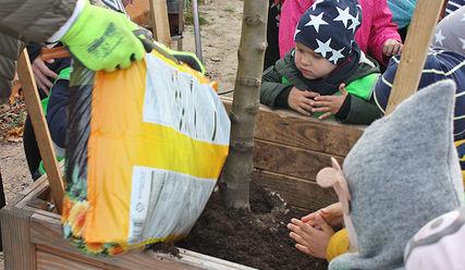 Kinder pflanzen einen Apfelbaum in Hamburg - Copyright: © Hagen Grützmacher